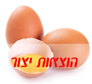 עלות יצור ביצת רביה כבדה לחודש אפריל 2015