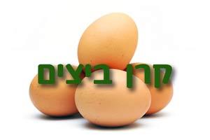 פרוטוקול מישיבת הנהלת קרן ביצים 2/2/2017
