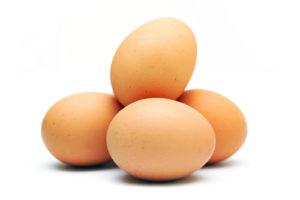 הנחיות טיפול בביצי מאכל בלולים ובמחסנים
