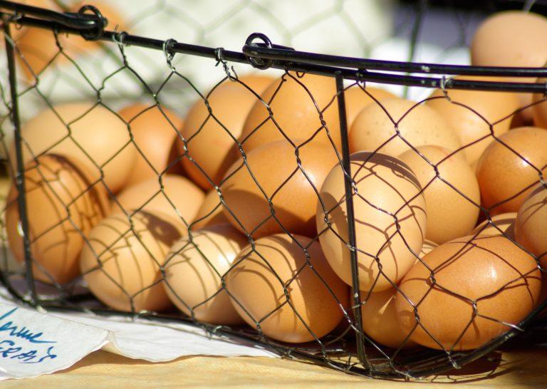 תחשיב עלויות ביצת מאכל אוקטובר 2018